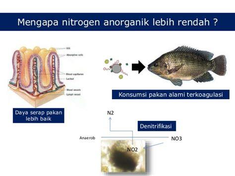 Suplemen Pakan Ikan Nila serbuk arang aktif sebagai suplemen pakan untuk ikan nila