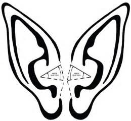 Ears Template by Ear Template Ears