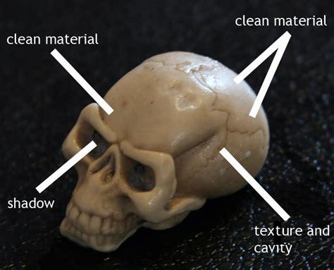zbrush tutorial skull skull exle zbrush docs