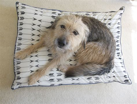dog bed pillows 8 super cosy and easy dog pillows to make