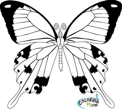 cool butterfly coloring pages simple butterfly coloring pages getcoloringpages com