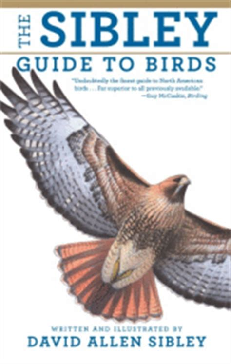 the sibley guide to birds sibley guides