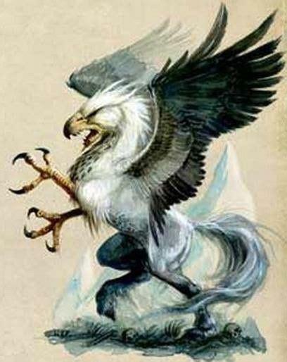 grifo y hipogrifo hipogrifo son seres voladores mezclados de caballos y
