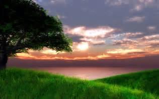 Landscape Pictures Of Sunset Sunset Green Landscape Wallpaper 1920x1200 32146