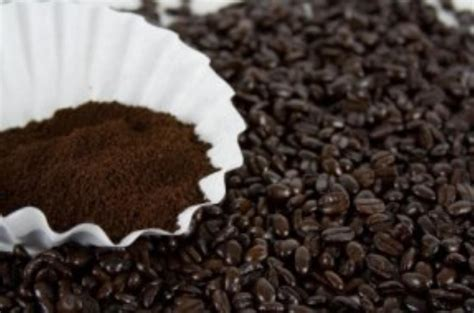 Coffee Filter which type of coffee filter should i use