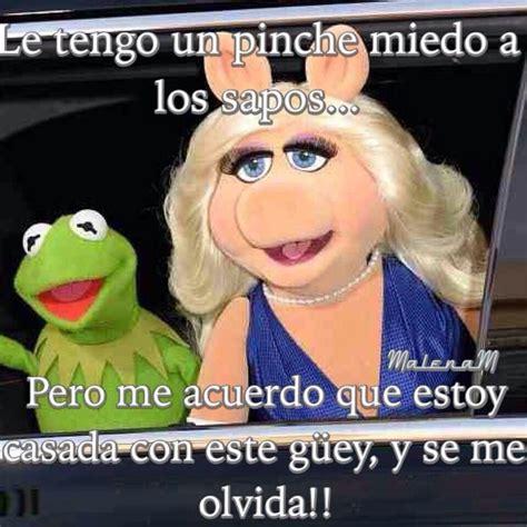 Ms Piggy Meme - 1000 images about memes rana rene peggy on pinterest