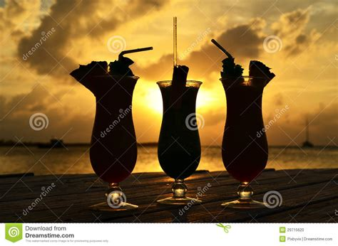 tropical cocktail silhouette tropical drinks silhouette stock photo image 29715620