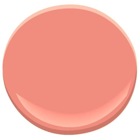 color of the week coral apricot
