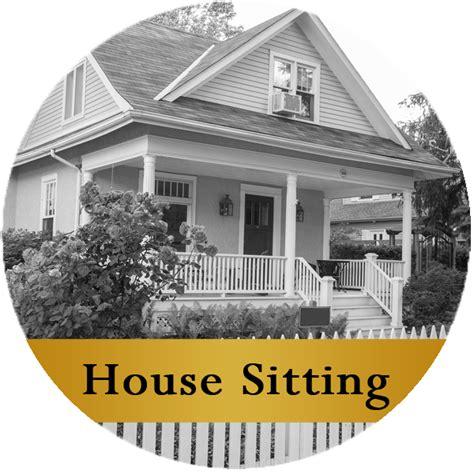 house siting a better way pet sitting service house sitting dog
