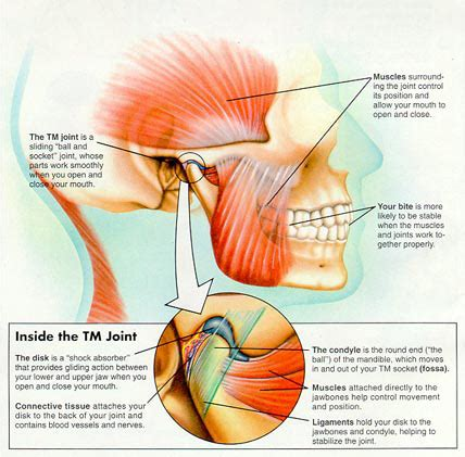 tmj problems – what does this mean? chiropractors in