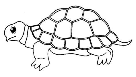 gambar gambar binatang untuk anak tk untuk mewarnai lucu dan mendidik car interior design