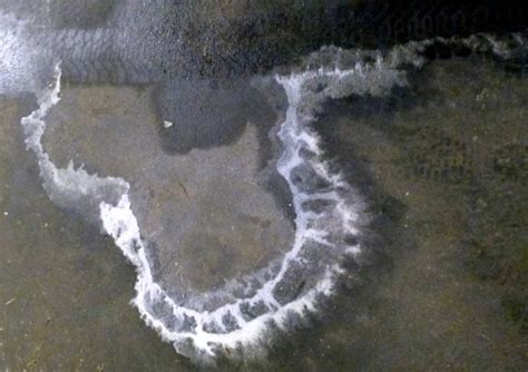 restore your garage floor from salt stains and winter