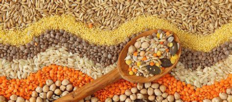 whole grains digestion grains what you should many lives medicine