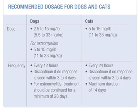 cerenia dosage for dogs cerenia dosage for cats cats kittens