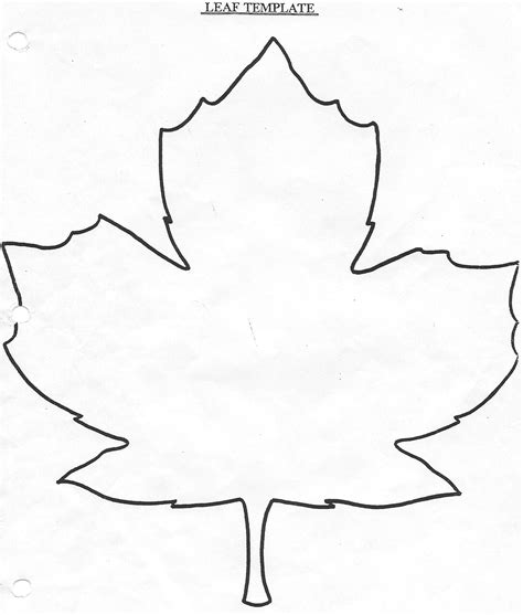 maple leaf printable template maple leaf template cake ideas and designs