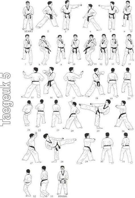 Taekwondo Poomsae (con imágenes) | Taekwondo formas
