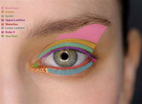 Eyeshadow A how to apply eye makeup eye makeup guide fashionisers