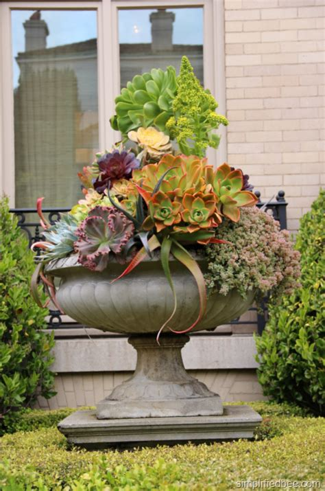 container garden archives simplified bee