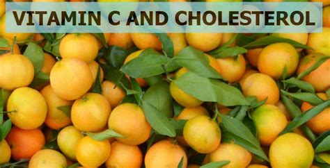 vitamin c supplement side effects cholesterol supplements that lower cholesterol without