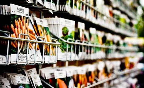 best seed company the 10 best seed companies for heirloom and non gmo seeds