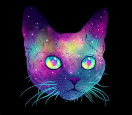 colorful cats galactic cats psychedelic illustrations merge cats and space