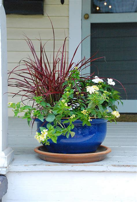 summer party ideas decorating with potted plants the home depot