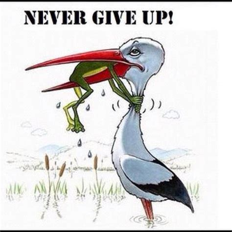 never give up never give up religion nigeria