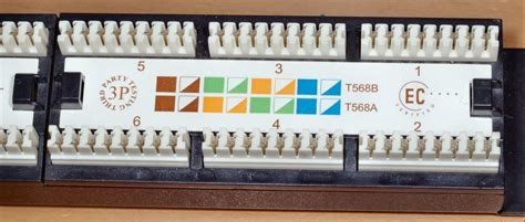 best t568b patch panel wiring gallery images for image