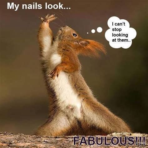 Funny Nail Memes - 496 best jammies images on pinterest bobby pins