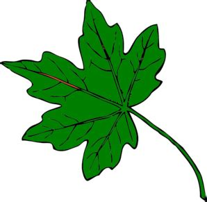 green maple leaf clipart | clipart panda free clipart images