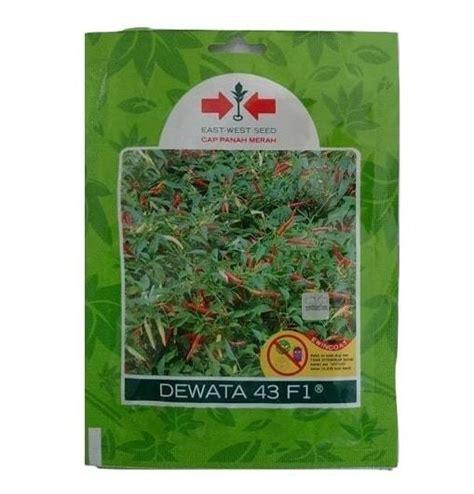 Jual Benih Cabe Rawit Merah jual benih cabe rawit dewata 43 f1 2 250 biji panah