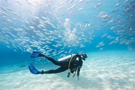 dive a 7 reasons to be thankful for being a diver