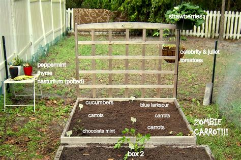 How To Layout A Garden Garden Layout Floridahoma