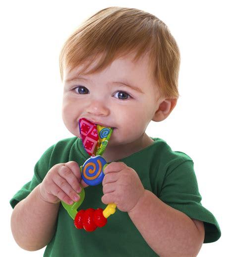 teething toys baby teething rings www pixshark images galleries with a bite