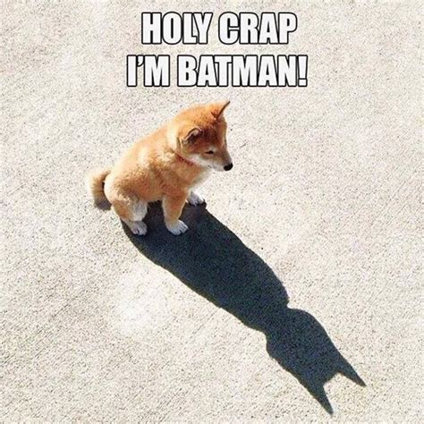 Holy Crap Meme - holy crap i m batman meme collection