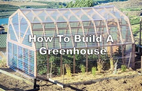 how to make a green house how to build a greenhouse