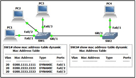 The Switch To Mac Part 1 Of 3 the network shown in the exhibit below was recently