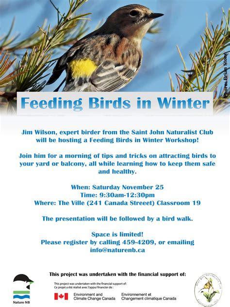 feeding birds in winter workshop nature nb