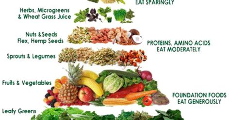 vegetables vs protein vegetable vs protein search get your