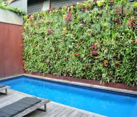 Vertical Gardens Perth Vertical Gardens For Efficient Planting In Perth