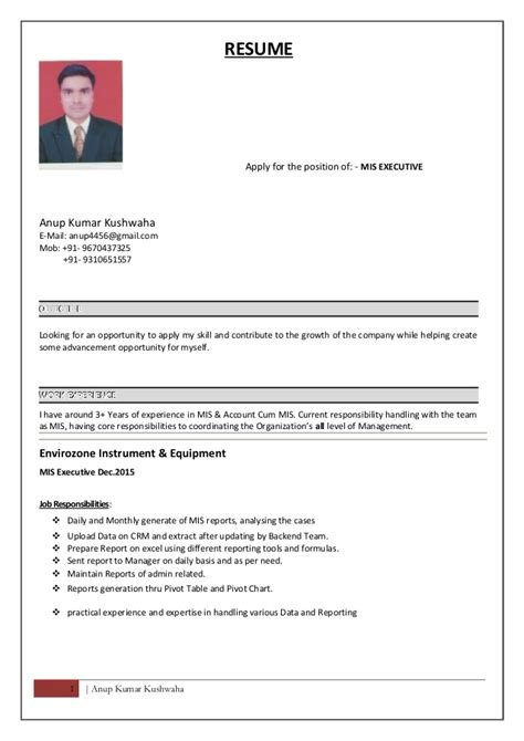 mis executive resume format resume of mis executive resume ideas