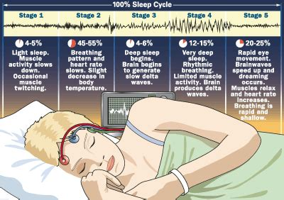 psych your mind: the sleep cycle: what's really going on