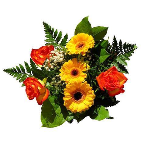 fiori laurea uomo festa di laurea idee per organizzare una festa da 110 e lode