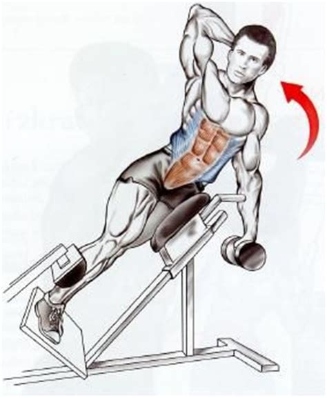 hip flexors bar  anatomy  pinterest