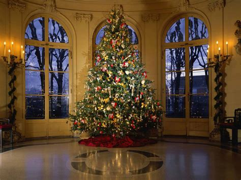 pretty decorated christmas trees 24 stunning tree images