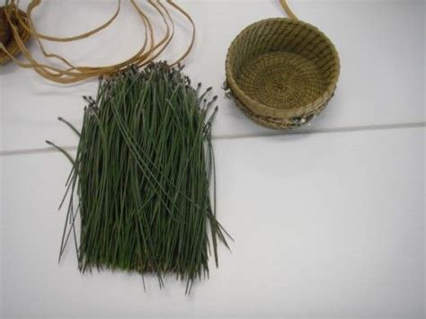 pine needle crafts for best 25 pine needles ideas on pine needle