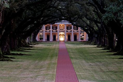 southern plantation home life lilly and the pursuit of happiness happiness is