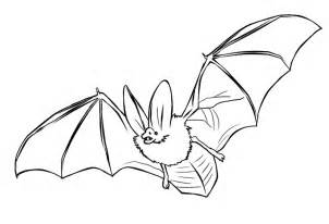 bat coloring pages printable bats coloring pages coloring me