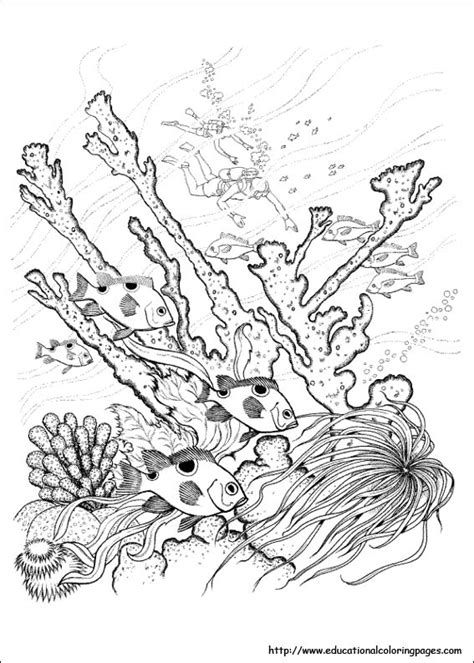 Exploring Nature Coloring Pages | winter scenes coloring pages printable sketch coloring page