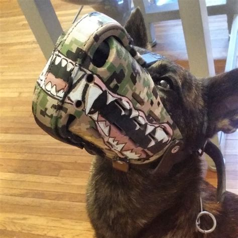 how it s made dogs how to make custom and emergency muzzles zozeen